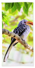 Bath Towel featuring the photograph Southern Yellow Billed Hornbill by Alexey Stiop