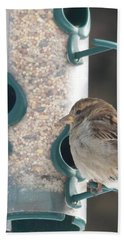 Sparrow And Seed Hand Towel