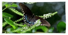 Spicebush Swallowtail Butterfly Hand Towel by Carol Bradley