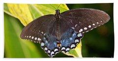 Spicebush Swallowtail Hand Towel