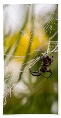Spider And Spider Web With Dew Drops 04 Bath Towel