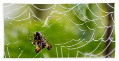 Spider And Spider Web With Dew Drops 05 Hand Towel