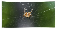 Hand Towel featuring the photograph Spidey by Nikki McInnes