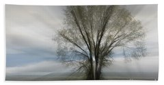Hand Towel featuring the photograph Spirit Of Nature by Sandra Bronstein