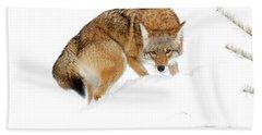 Spot On Bath Towel by Steve McKinzie
