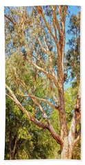 Hand Towel featuring the photograph Spot The Koala, Yanchep National Park by Dave Catley