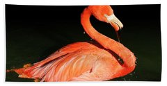 Spotlight On A Bathing Flamingo Bath Towel