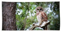 Spotted Owl II Hand Towel