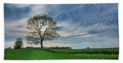 Bath Towel featuring the photograph Spring Coming On by Bill Pevlor