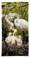 Spring Egret Chicks Bath Towel by Robert Frederick