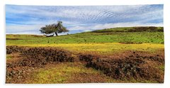 Bath Towel featuring the photograph Spring On North Table Mountain by James Eddy
