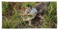 Squirrel At Moonstone Beach, California 002 Bath Towel