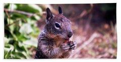 Squirrel At Moonstone Beach, California 003 Bath Towel