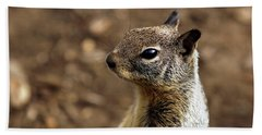 Squirrel At Moonstone Beach, California - 004 Hand Towel