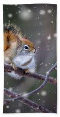 Squirrel Balancing Act Bath Towel