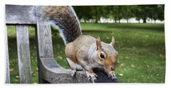 Squirrel Bench Hand Towel