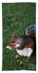 Squirrel Eating Hand Towel