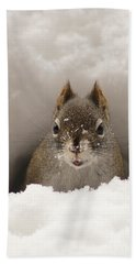 Squirrel In A Snow Tunnel Bath Towel by Stanza Widen