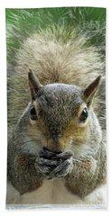 Squirrel  Hand Towel