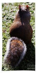 Squirrel S Back Hand Towel