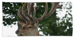 Stag Head. Hand Towel