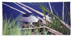 Stalking Black Crowned Night Heron Hand Towel