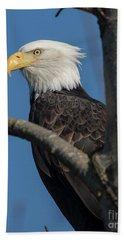 Staredown By Eagle  Bath Towel