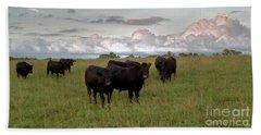 Steers In The Pasture Hand Towel