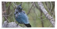 Hand Towel featuring the photograph Stellar's Jay by Gary Lengyel