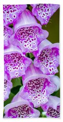 Hand Towel featuring the photograph Stem Of Foxglove by Steven Santamour