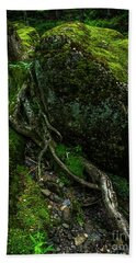Hand Towel featuring the photograph Stevensville Brook In Underhill, Vermont - 5 by James Aiken