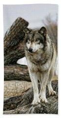 Still Wolf Bath Towel