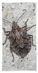 Bath Towel featuring the photograph Stink Bug by Breck Bartholomew