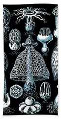 Bath Towel featuring the drawing Stinkhorn Mushrooms Vintage Illustration by Edward Fielding