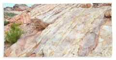 Bath Towel featuring the photograph Stone Feet In Valley Of Fire by Ray Mathis