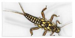 Stonefly Larva Nymph Plecoptera Perla Marginata - Steinflue -  Hand Towel