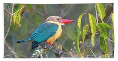 Stork-billed Kingfisher Hand Towel by Pravine Chester
