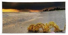 Hand Towel featuring the photograph Storm And Sea Shell On Sanibel by Greg Mimbs