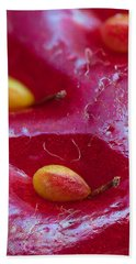 Hand Towel featuring the photograph Strawberry Fields by Alexey Kljatov