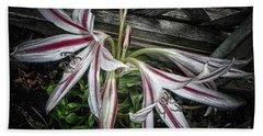Striped Lilies Hand Towel