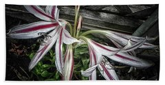 Striped Lilies Bath Towel