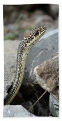 Striped Whipsnake, Masticophis Taeniatus Bath Towel