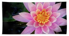 Stunning Water Lily Hand Towel
