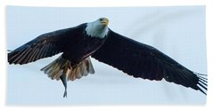 Successful Bald Eagle Panoramic Bath Towel by Jeff at JSJ Photography