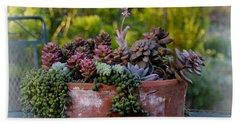 Succulents In Terracotta Planter Bath Towel