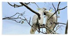 Sulphur Crested Cockatoos Hand Towel by Kaye Menner