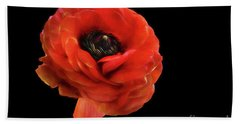 Hand Towel featuring the photograph Summer Orange by Darren Fisher