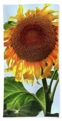 Summer Sunflower Bath Towel by Mikki Cucuzzo