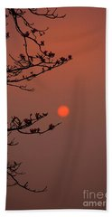 Sun Blossoms Nature Asia  Hand Towel