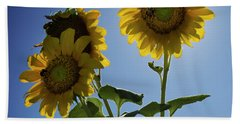 Hand Towel featuring the photograph Sun Flowers by Brian Jones